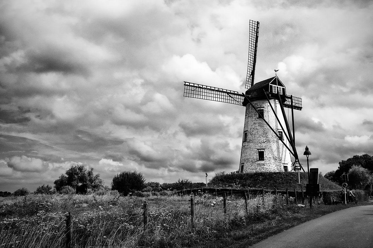 windmill2434